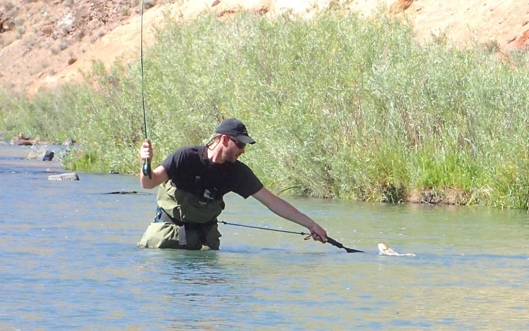 Get Yourself a Set of Waders and Get in the Water with the Fish