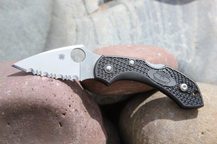 A Fantastic Little EDC Knife: Spyderco Dragonfly 2